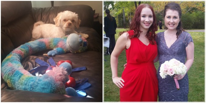 1. My dog hoards his toys like I hoard makeup 2. One of my beautiful besties and I at the wedding on Saturday