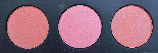 Pantone Coral Makeup Morphe 9B Palette